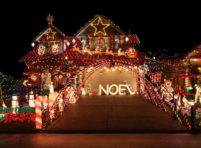 Christmas Light Tours - Premier Transportation Services - Dallas, TX
