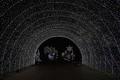 Tour of Lights in Farmers Branch Texas