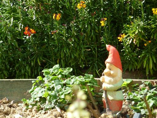 Lakewood Residents Should Beware of Garden Gnomes and Robbers ...